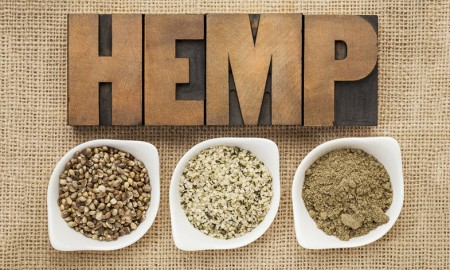 Why more Men are Choosing Hemp Protein - Webmdmen