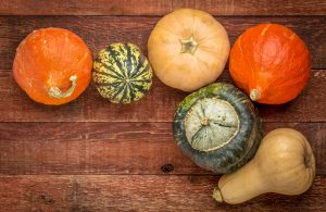 winter vegetables, squash