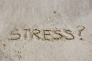 emotional stress, adrenal fatigue