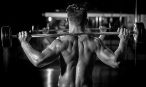 man with muscular back lifting barbell, full body workout