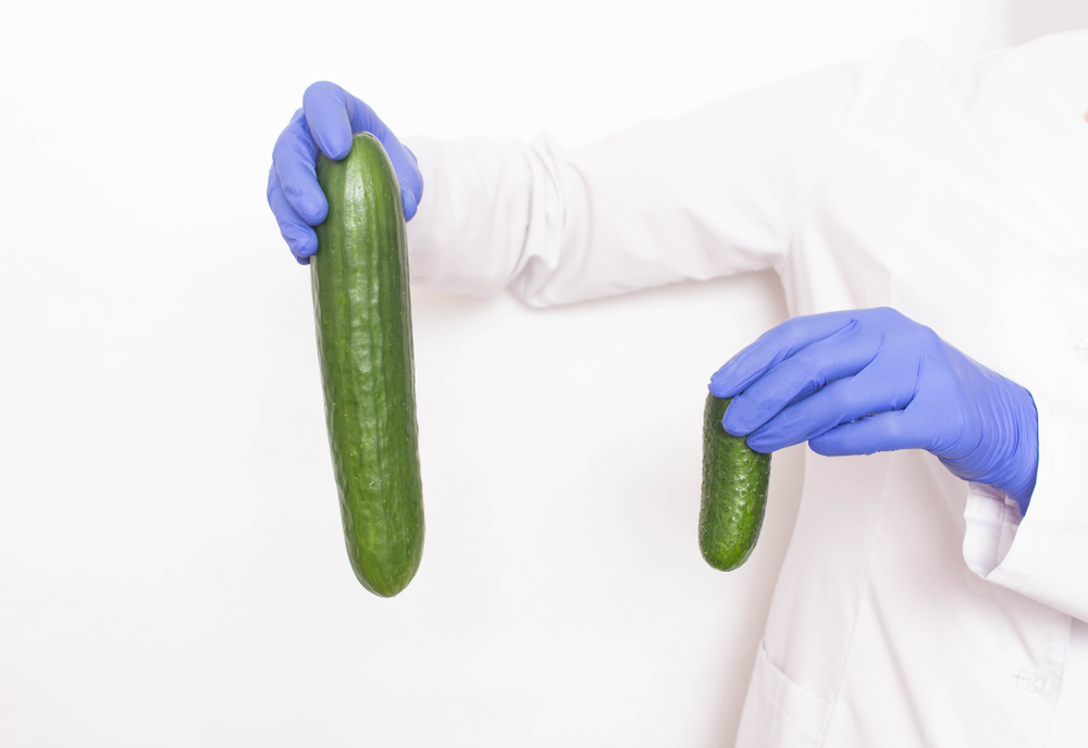 Every Answer to the Most Important Penis Enlargement Questions